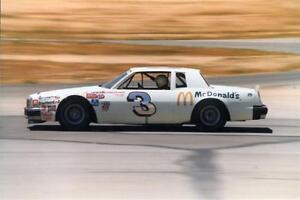 CD_874 #3 Richard Childress McDonald's   1981 Pontiac 1:64 DECALS