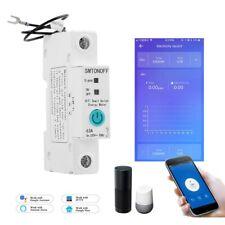 1P eWelink monofase su guida Din WIFI Smart Energy Meter Consumo di energia kWh
