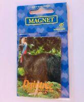 Daintree World Heritage Australia Cassowary Bird Souvenir Magnet Vintage (K13)