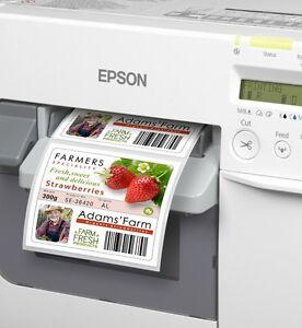 FOLIENetiketten 102 x152 mm PE  MATT  Epson Colorworks C3400 C3500  / C33S045549