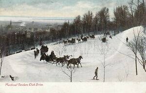 CANADA MONTREAL Tandem Club Drive Sledges PPC Leighton 1905 Stamp Removed