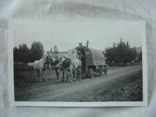 Vintage Photo Sheep Herders Chuck Wagon Shepherds 816