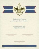 BOY SCOUT OFFICIAL BSA ADULT EXECUTIVE BOARD LOCAL COUNCIL CERTIFICATE 8.5x10""