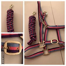 Headcollar and Lead Rope, COB, Neon Pink, Purple And Baby Blue, FREE UK POSTAGE