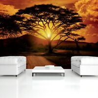 Fototapete XXL Landschaft NATUR AFRIKA BAUM SONNENUNTERGANG Wohnzimmer Tapete 2