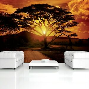 Fototapete Safari Landschaft NATUR AFRIKA BAUM SONNENUNTERGANG Wohnzimmer 2