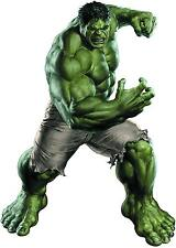 IRON ON TRANSFER FOR ANY COLOR TOP - THE HULK - Size 14cm X 10cm