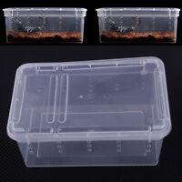 Klar Box Reptilien Fütterung Brutbox Insekten Amphibie Frosch Spider Käfig Box