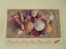 North Myrtle Beach, SC, USA, Postcard, Posted September 1997, Shells