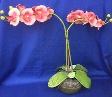 Phaleanopsis Arrangement & Vase Terra Urn Artificial Pink Orchid Flower Bonsai