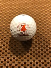 Logo Golf Ball-Ncaa-Vt Hokies Spring Swing Golf Classic.National Bank
