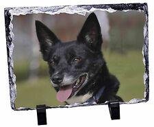 Tri-Colour Border Collie Dog Photo Slate Christmas Gift Ornament AD-BC35SL