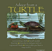 Turtle T-shirt S M L XL 2XL Advice Unisex NWT Tortoise Forest Cotton Green