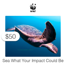 $50 Charitable Donation For: Sea What Your Impact Could Be on Wildlife