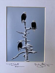 """Woody Galloway Hand Signed """"The Silent Ones"""" Photograph Bald Eagles Matted"""