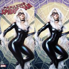 AMAZIING SPIDER-MAN #25 J.SCOTT CAMPBELL VARIANT SET A/C COVER