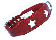 12-16 Inch Red White Stars Staffy Bull Terrier Labrador Leather Dog Collar