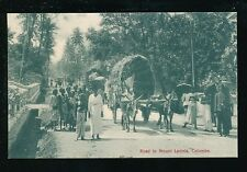 Ceylon COLOMBO Road to Mount Lavinia Rural scene c1900/10s? PPC