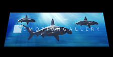 HAMMERHEAD SHARKS 3D MOTION  BOOKMARK  BY EMOTION GALLERY- BM-024