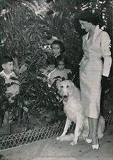 MODE c. 1952 - Jeune Femme Élégante Enfants Chien Lévrier - PR 913