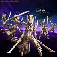 Executrix - COMMAND-Raging Heroes-Drukhari/Eldar Incubus Archon, Kabalite Incubi
