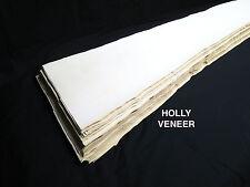 Holly 1/42 Veneer American lumber white wood, kd - over 7 sq ft