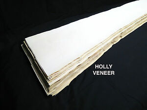 Holly * 1/32 * Veneer American lumber white wood, kd -  over 2.5 sq ft!