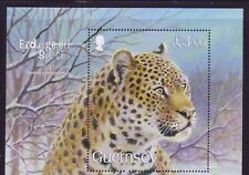 2009 Guernsey. Endangered Species (5th series)  Amur Leopard  MS1266 MNH