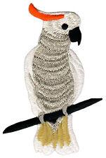 ao97 Vogel Kakadu Papagei Tier Gestickter Aufnäher Bügelbild Patch 6,1 x 9,3 cm