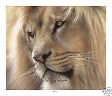 'Manzi' Limited Edition Print, Lion Print, Lions