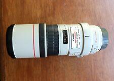 canon ef 300 mm f4 l is usm lens
