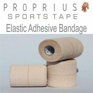 EAB Elastic Adhesive Bandage 16x75mmx4.5,Sports,Rugby,Shoulder,Vet,StrappingTape