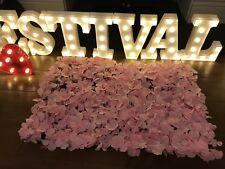 Pink Hydrangea Flower Wall Panel 60cm X 40cm