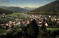 Herrenalb im Schwarzwald Color Ansichtskarte 1920 gelaufen Gesamtansicht Totale