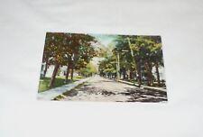Vintage 1912 Troy Pa Postcard Elmira Street Postally used