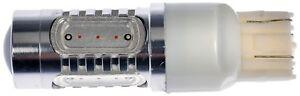 Tail Light Bulb Dorman 7443A-HP