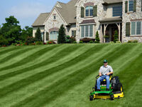 John Deere Z245 Z425 Z445 Z465 EZtrack Lawn Striping Kit Grass Groomer LP1000