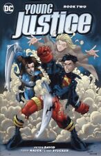 YOUNG JUSTICE TPB BOOK 2 REPS #8-17 & OTHERS NEW/UNREAD