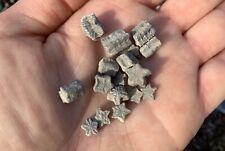 Superb Fossil CRINOID STARS Sea Lilly Morocco Lower Jurassic FREE BOX