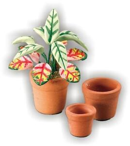 Terra Cotta Pots Tropical Plant Set Reutter Porcelain 1:12 Scale Made in Germany
