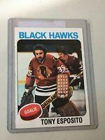 F45924  1975-76 Topps #240 Tony Esposito BLACKHAWKS