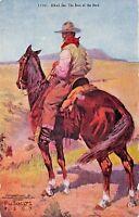 ALKALI IKE~THE BOSS OF THE HERD~W SCHULTZ ARTIST DRAWN 1907 COWBOY POSTCARD
