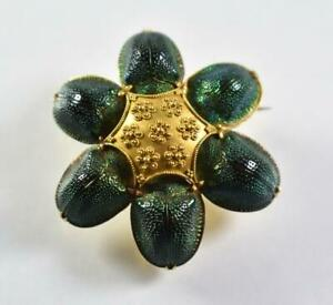 Victorian Darwin Era Egyptian Revival Scarab / Tortoise Beetle 22k Brooch / Pin
