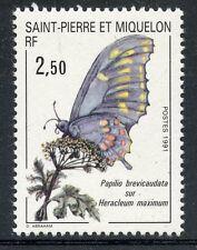 STAMP / TIMBRE / SAINT PIERRE ET MIQUELON NEUF N° 534 faune papillon
