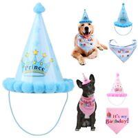 Dog Cat Birthday Bandana & Hat Set Pet Puppy Costume Gift Accessories Blue/Pink