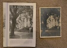 1915 ERNEST CRANDALL published photo National Geographic & 54 more Smithsonian