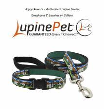 "Lupine Lifetime Guarantee Dog Leash or Collar- 1""- LIMITED - Sheep - EWEPHORIA"