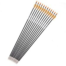 "Archery 6/12pcs 31"" Fiberglass Shaft Arrows Vanes Sp700 Hunting Practise Bow"