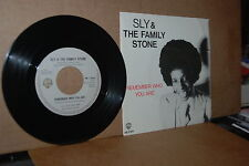 SLY & THE FAMILY STONE: REMEMBER WHO YOU ARE; 1979 DUTCH 45 & PICTURE SLEEVE