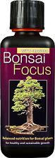 BONSAI Focus Plant Food-nutrienti per Bonsai Trees - 300ml
